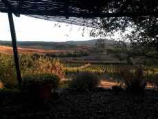 Vista-terrazza-VIGNA
