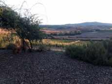 vista-terrazza-VIGNA2